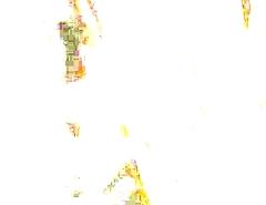 FormatFactoryMOV036