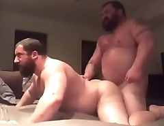 Hot bears